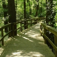 chattanooga-arboretum-and-garden-nature-center